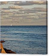 20- Serenity Canvas Print