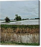 2011 Flood Canvas Print