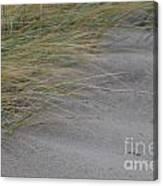 Hurricane Sandy Canvas Print