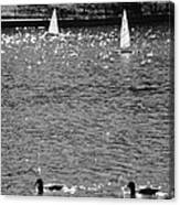 2boats2ducks In Black And White Canvas Print