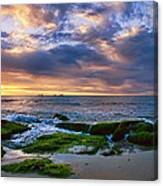 Burns Beach Canvas Print
