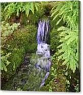 Mossy Waterfall Canvas Print
