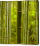 Mystical Bamboo Canvas Print
