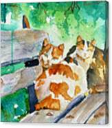 3 On A Bench Canvas Print