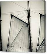 3 Sails In Monotone Of An Old Sailboat Canvas Print