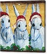 3 Shy Santa Bunnies Canvas Print