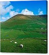 Slea Head, Dingle Peninsula, Co Kerry Canvas Print