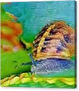 Snail On Aloe Vera Canvas Print