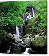 Torc Waterfall, Killarney, Co Kerry Canvas Print