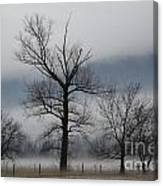 Trees With Fog Canvas Print