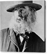 Walt Whitman, American Poet Canvas Print