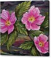 3 Wild Roses Canvas Print