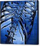Torso Skeleton Canvas Print