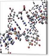 Dna Molecule, Artwork Canvas Print