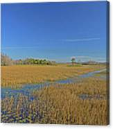 35- Grassy Waters Canvas Print