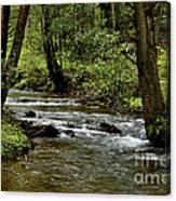 Craig Run Monongahela National Forest Canvas Print