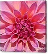Dahlia Named Lucky Number Canvas Print