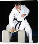 Karate Canvas Print