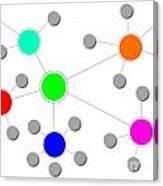 Network Canvas Print