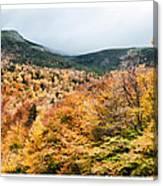 White Mountain's Gold Canvas Print