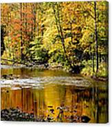 Williams River Autumn Canvas Print