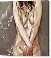 Beautiful Soiled Naked Woman's Body Canvas Print
