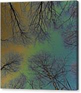 Epping Forest Art Canvas Print