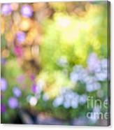 Flower Garden In Sunshine Canvas Print