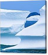 Icebergs, Canada Canvas Print