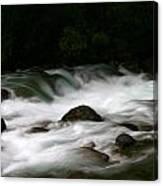Little Susitna River Canvas Print