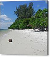 5- Marooned Canvas Print