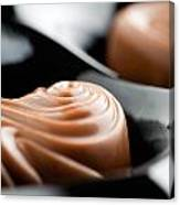 Milk Chocolate Canvas Print