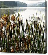 Misty Morning Big Ditch Lake Canvas Print