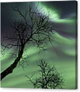 Northern Lights In The Arctic Canvas Print