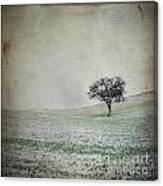 Textured Tree Canvas Print