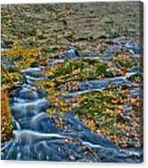 Big Hunting Creek Upstream From Cunningham Falls Canvas Print