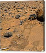 Panoramic View Of Mars Canvas Print