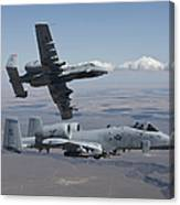 Two A-10 Thunderbolts Fly Canvas Print