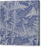 Frost On A Window Canvas Print