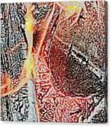 Wood Fire Canvas Print