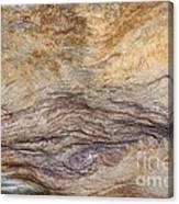 Natures Rock Art Canvas Print