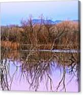 Bosque Del Apache Canvas Print