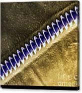 Cricket Sound Comb, Sem Canvas Print