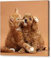 Puppy And Kitten Canvas Print