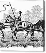 Virginia: Tobacco Culture Canvas Print