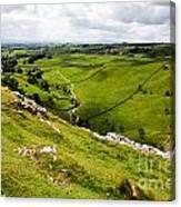 Yorkshire Dales National Park Canvas Print