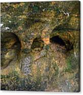 Ash Cave Canvas Print