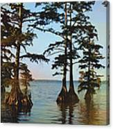 Reelfoot Lake Canvas Print
