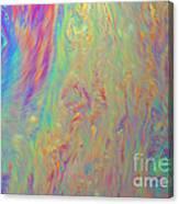 Soap Film Canvas Print