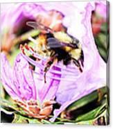 A Bees World Canvas Print